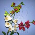 orquidea_cymbidium